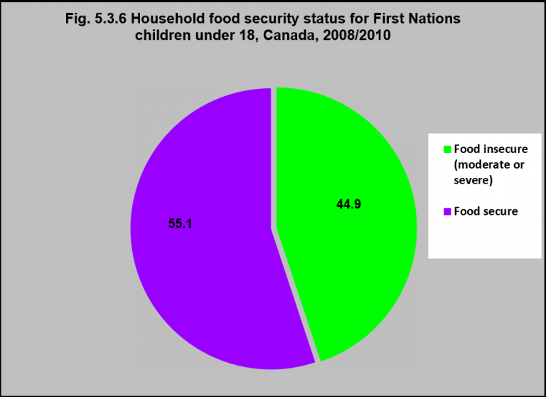 Household food security status for First Nations children ...